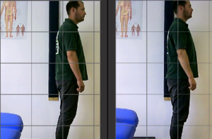 Posture and your Body